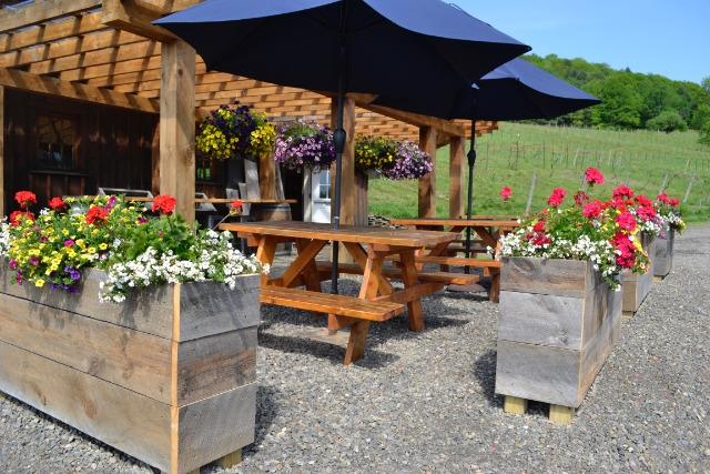 Pail Shop Vineyards REOPENS and Celebrate 4th of July!